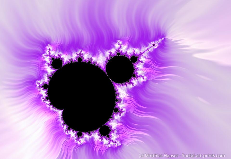 Mandelbrot Set purple black white